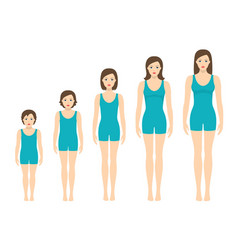 Womens body proportions changing with age vector
