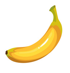 cartoon yellow banana vector image vector image