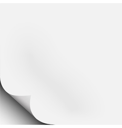 White piece of paper with corner fold curl vector image vector image