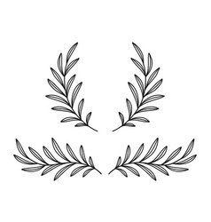 black olive branches wreaths with leaves vector image