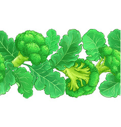 Broccoli plant pattern on white background vector