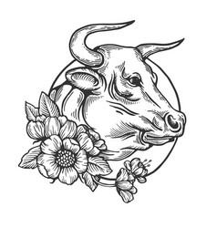 Bull animal engraving vector