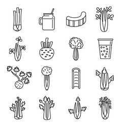 Celery salad icons set outline style vector