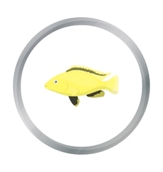 Cichlid hummingbird fish icon cartoon Singe vector