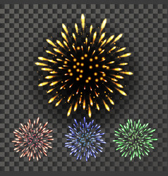 firework night carnival light isolated on vector image