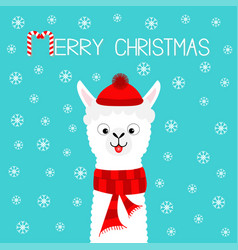 merry christmas alpaca llama baby face neck santa vector image