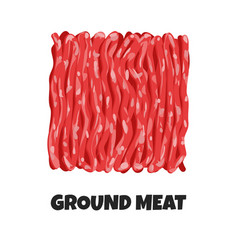 Realistic ground meat vector