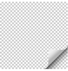 Transparent sheet of paper with curled corner vector