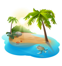tropical island with palm tree and turtle vector image
