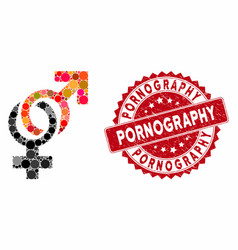 collage sexual symbols with grunge pornography vector image