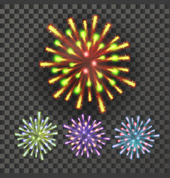 firework holiday anniversary salute burst vector image