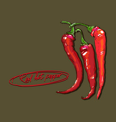 hand drawing red hot peppers vector image