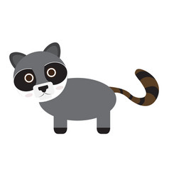 isolated cute raccoon vector image