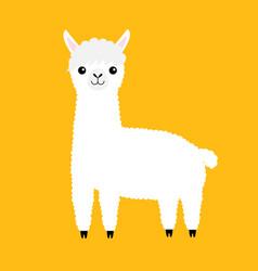 llama alpaca animal cute cartoon funny kawaii vector image