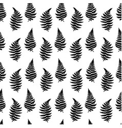 pattern of fern leaf vector image