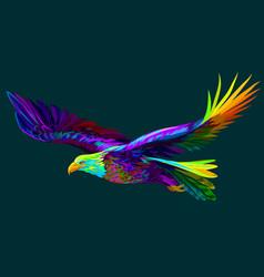soaring bald eagle portrait vector image