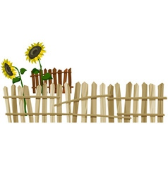 curve wooden fence and flowers sunflower vector image vector image