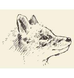 Fox head style vintage drawn sketch vector image