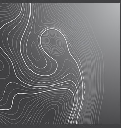 Abstract background with a contour topography vector