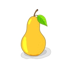 Bright yellow pear hand-drawn vector