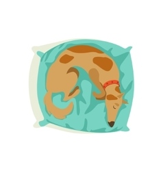 Brown Pet Dog Sleeping On Pillow Animal Emotion vector