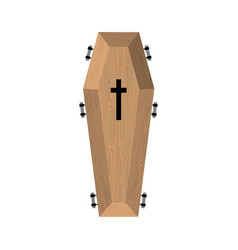 Coffin isolated wooden casket on white background vector