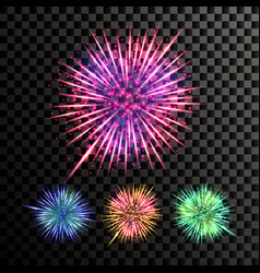 firework festive explosion light isolated vector image