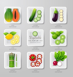 Nfographic food vegetables flat lay idea hipster vector