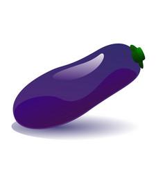 ripe eggplant vector image