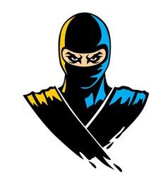 ninja mascot in paint effect vector image