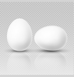 Realistic chicken egg template for easter vector