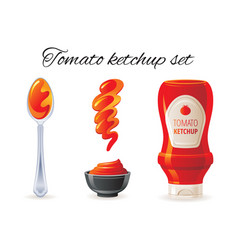 tomato ketchup sauce hot sauce bottle bowl vector image