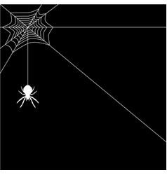 banner spider web vector image