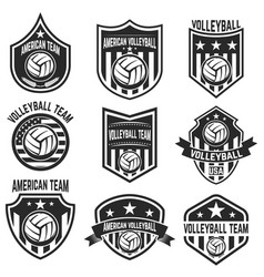 american volleyball team labels design elements vector image