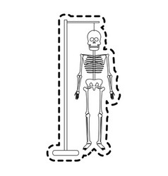 human skeleton icon image vector image vector image