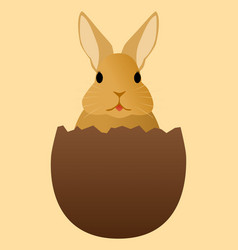 a rabbit in a chocolate egg vector image