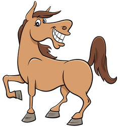 Cartoon horse farm animal character vector