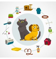 Cat and dog care items pet shop infographics vector image