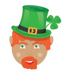 isolated irish elf vector image
