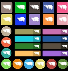 Liver icon sign Set from twenty seven multicolored vector image
