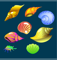 set of sea shell on the dark background vector image