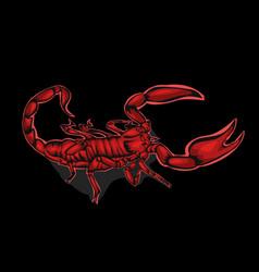 simple design scorpion red vector image