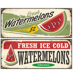 watermelons retro advertisement vector image