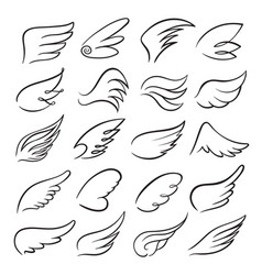 wings icon set bird drawing in motion vector image