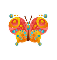 Colorful butterfly insect on a vector
