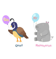 isolated alphabet letter q-quailr-rhinoceros vector image