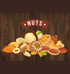 Nut pile as banner with kernel and shell sign vector