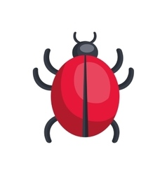 red ladybug insect vector image