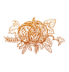 stylized pumpkin and leaves isolated on white vector image