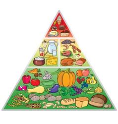 Food pyramid vector image vector image